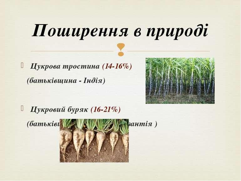 Цукрова тростина (14-16%) (батьківщина - Індія) Цукровий буряк (16-21%) (бать...
