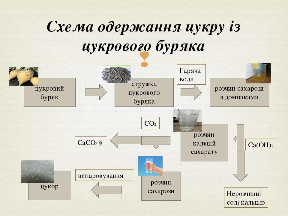 Схема одержання цукру із цукрового буряка цукровий буряк стружка цукрового бу...