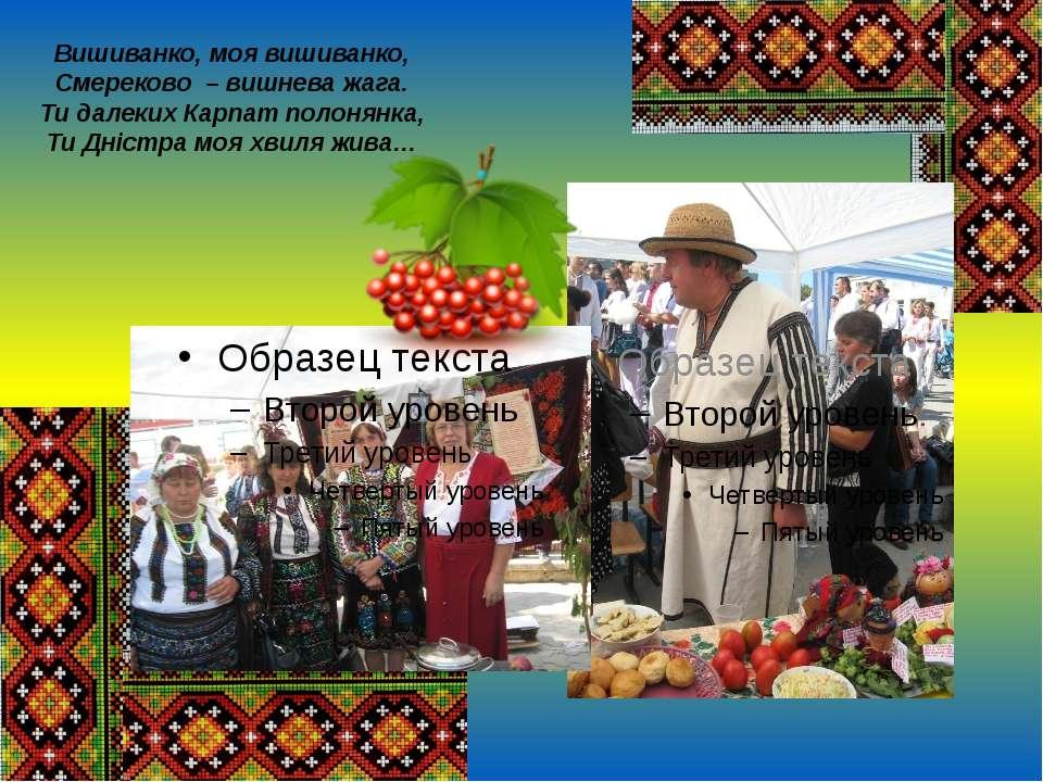 Вишиванко, моя вишиванко, Смереково – вишнева жага. Ти далеких Карпат полонян...