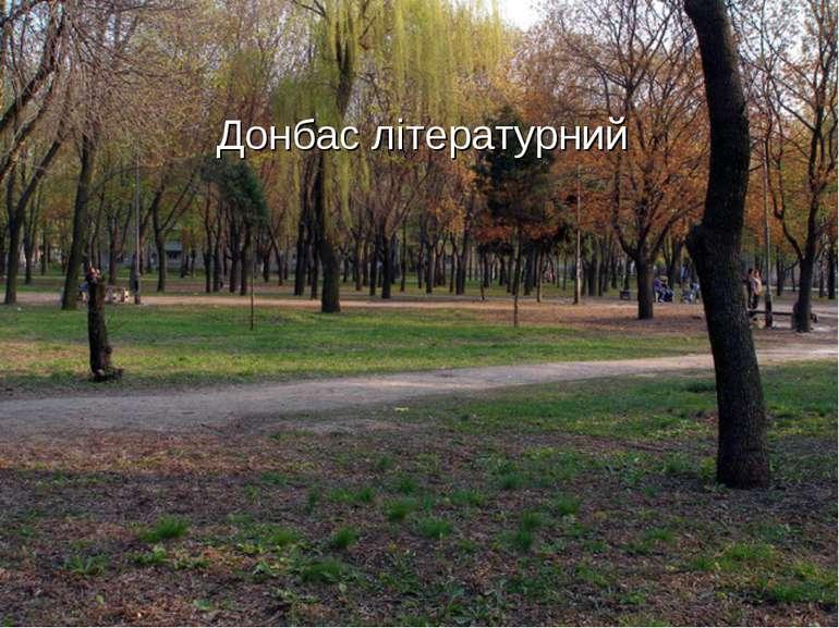 Донбас літературний