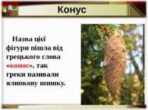 Назва цієї фігури пішла від грецького слова «конос», так греки називали ялинк...