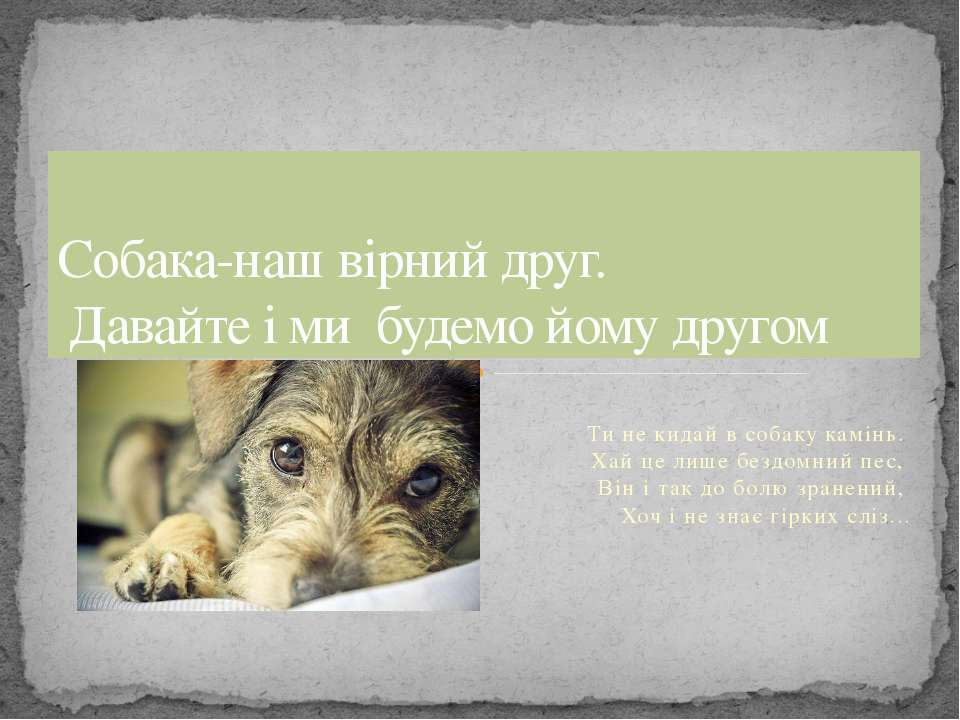 Ти не кидай в собаку камінь. Хай це лише бездомний пес, Він і так до болю зра...