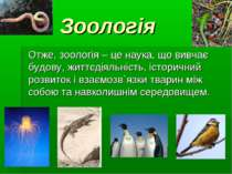 Зоологія Отже, зоологія – це наука, що вивчає будову, життєдіяльність, істори...