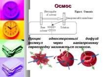 Осмос Процес односторонньої дифузії молекул через напівпроникну перегородку н...