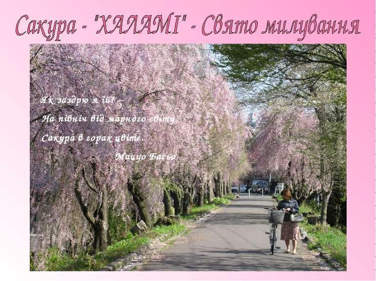 Як заздрю я їй! – На північ від марного світу Сакура в горах цвіте. Мацуо Басьо
