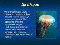 Це цікаво Одна з найбільших медуз – ціанея, може досягати 4 м в діаметрі та м...