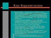 Клас Коралові поліпи Коралові поліпи (лат. Anthozoa) утворюють найбільшу за к...