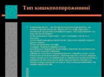 Тип кишковопорожнинні Кишковопорожнинні — примітивні багатоклітинні водні орг...