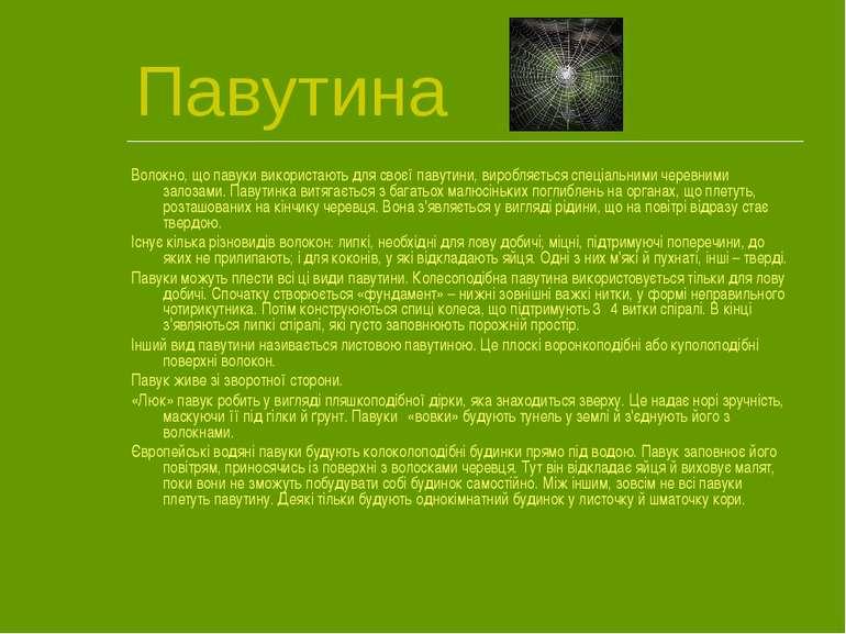 Павутина Волокно, що павуки використають для своєї павутини, виробляється спе...