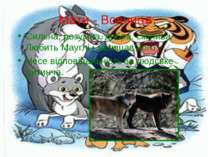 Мати - Вовчиця Сильна, розумна, добра, смілива. Любить Мауглі і захищає його....