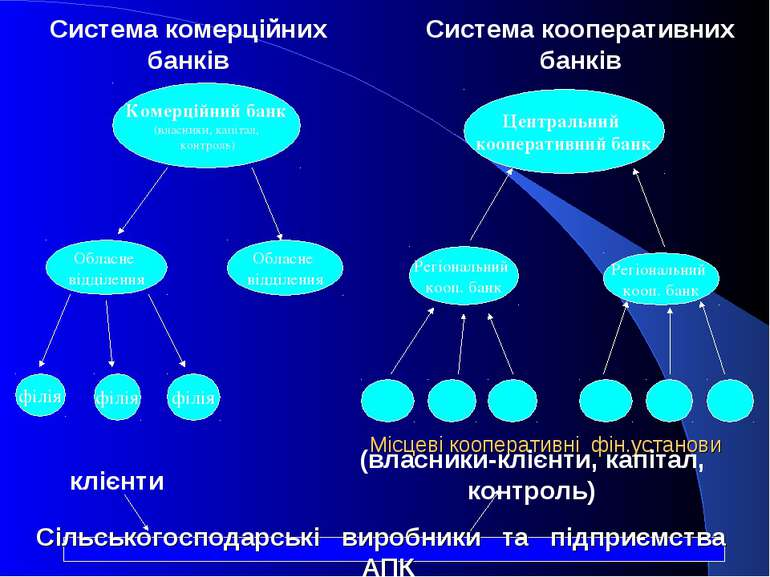 Місцеві кооперативні фін.установи Сільськогосподарські виробники та підприємс...