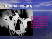 3 листопада 1957 року Другий штучний супутник Землі з собакою Лайкою літав 5 ...