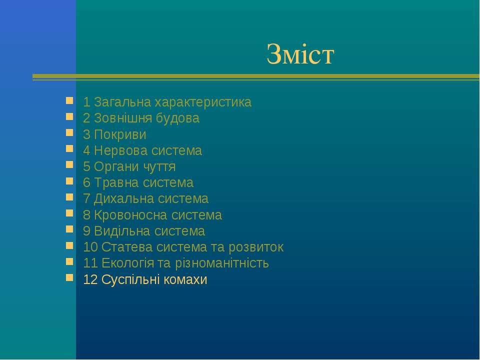 Зміст 1 Загальна характеристика 2 Зовнішня будова 3 Покриви 4 Нервова система...