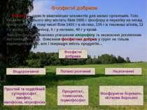 Фосфатні добрива Фосфор — один із важливіших елементів для живих організмів. ...
