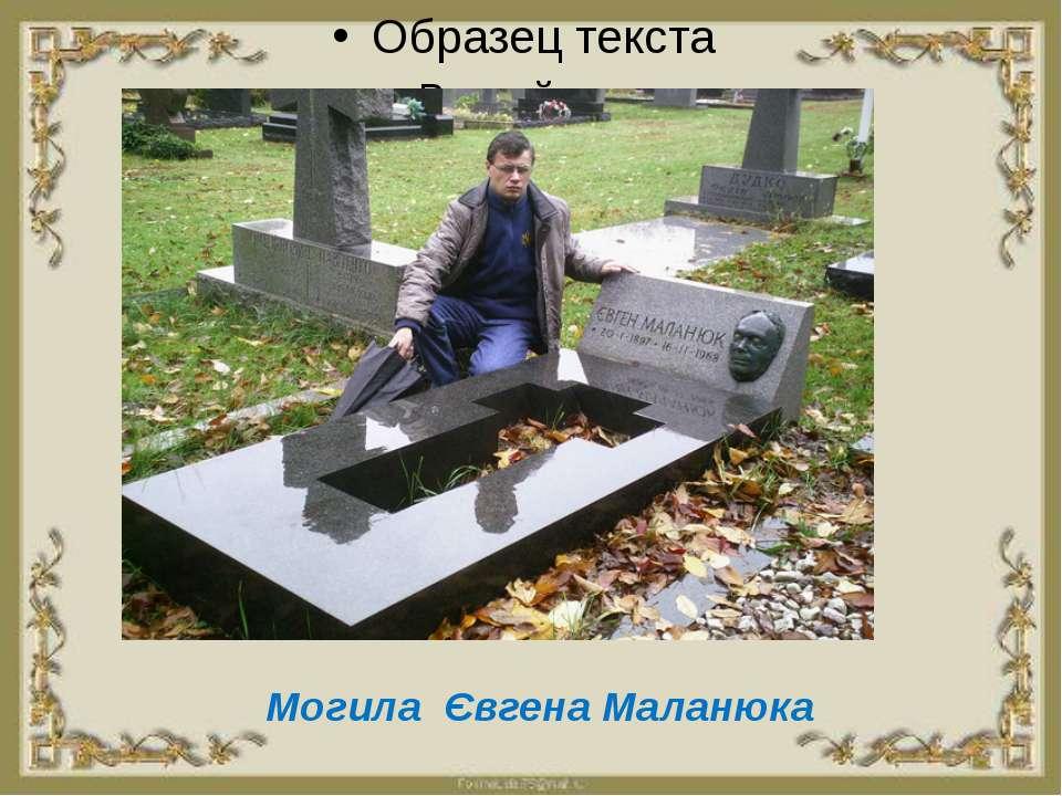 Могила Євгена Маланюка