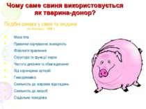Чому саме свиня використовується як тварина-донор? Подібні ознаки у свині та ...