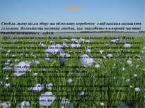 Льон Стебла льону після збору та обмолоту коробочок з-під насіння називають с...