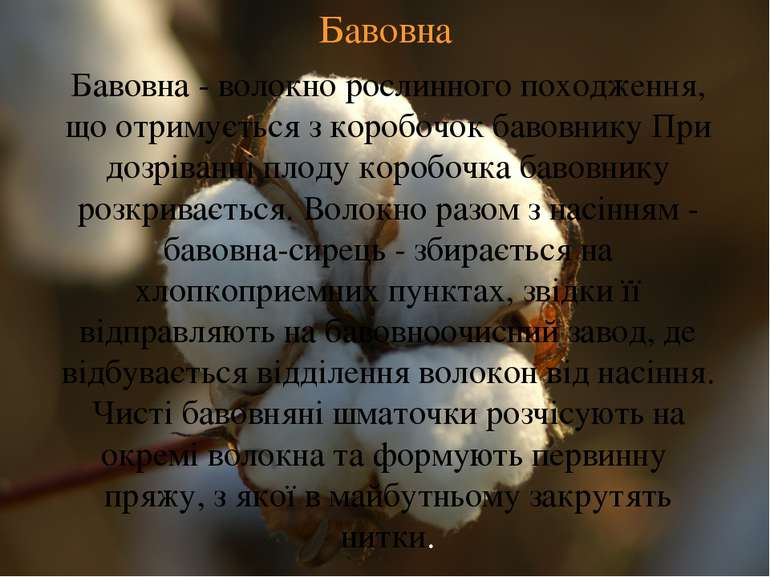 Бавовна Бавовна - волокно рослинного походження, що отримується з коробочок б...