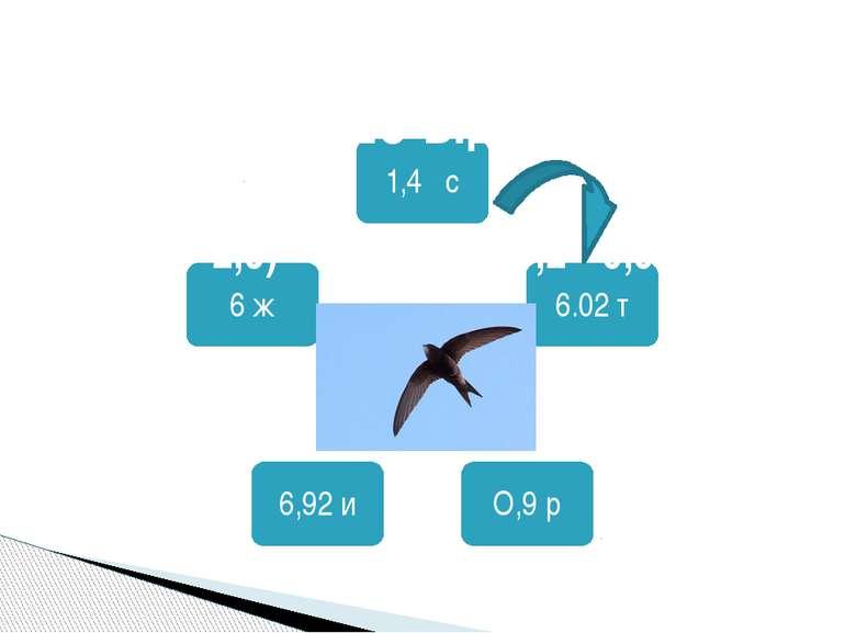 Який з наших птахів літає швидше від усіх? (4 – 2,6) · 4,3 + 1,08 : 1,2 - 0,9 =