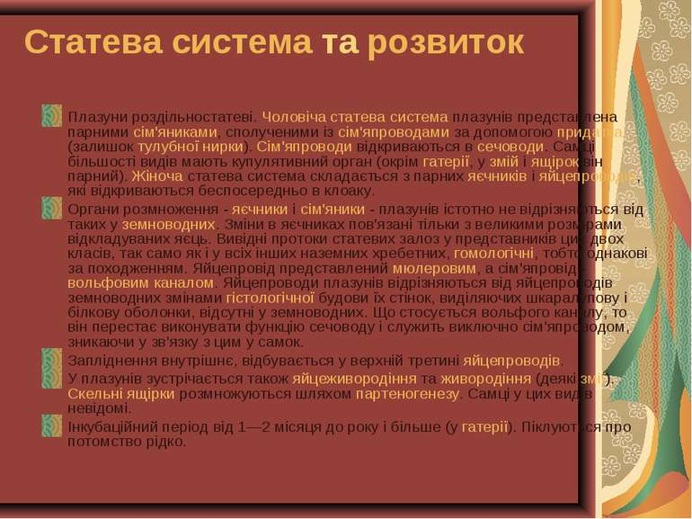 Статева система та розвиток Плазуни роздільностатеві. Чоловіча статева систем...