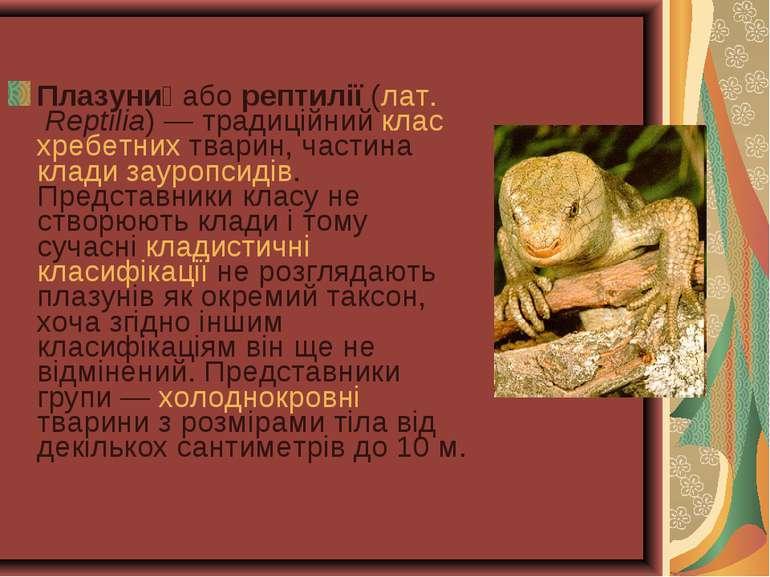 Плазуни або рептилії (лат. Reptilia)— традиційний клас хребетних тварин, час...