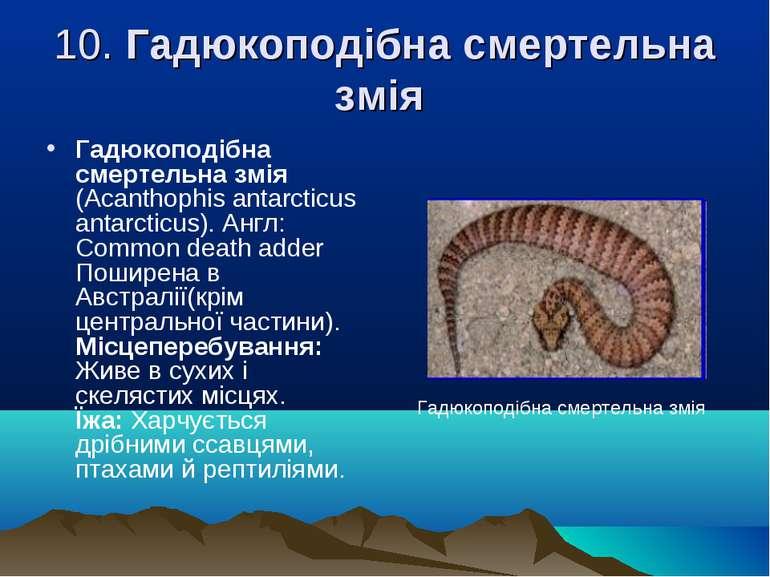10. Гадюкоподібна смертельна змія Гадюкоподібна смертельна змія (Acanthophіs ...