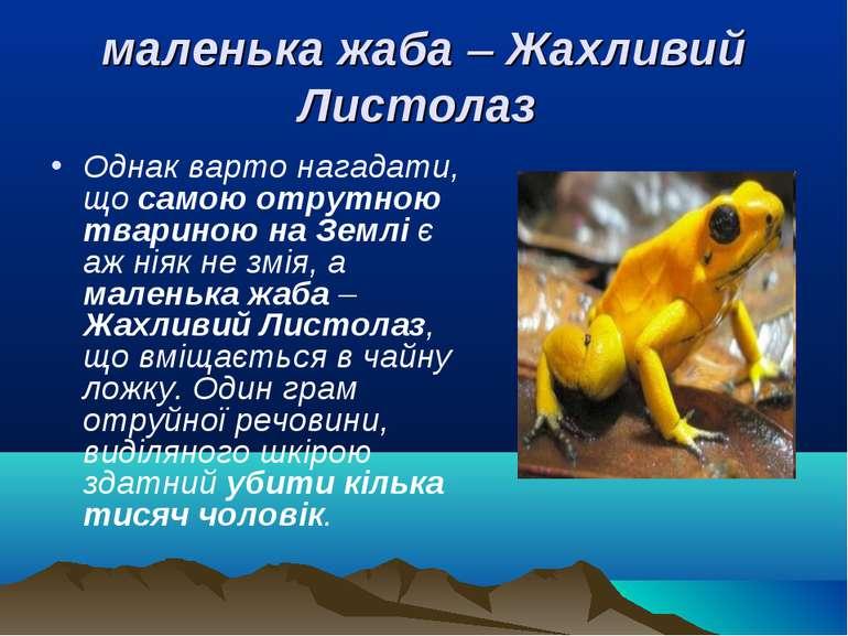 маленька жаба – Жахливий Листолаз Однак варто нагадати, що самою отрутною тва...