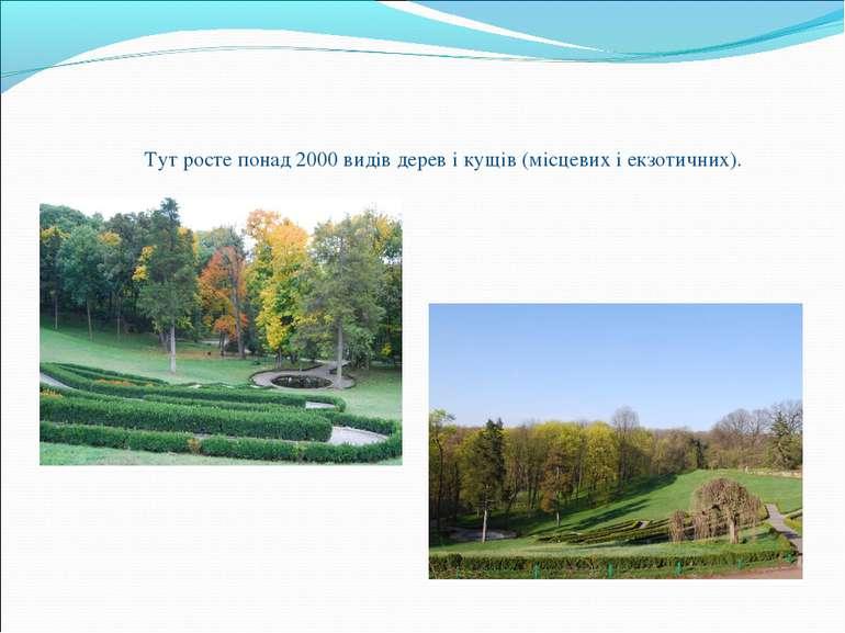 Тут росте понад 2000 видів дерев і кущів (місцевих і екзотичних).