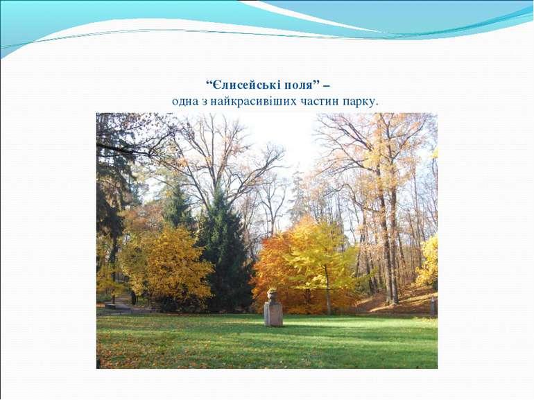 """""""Єлисейські поля"""" – одна з найкрасивіших частин парку."""