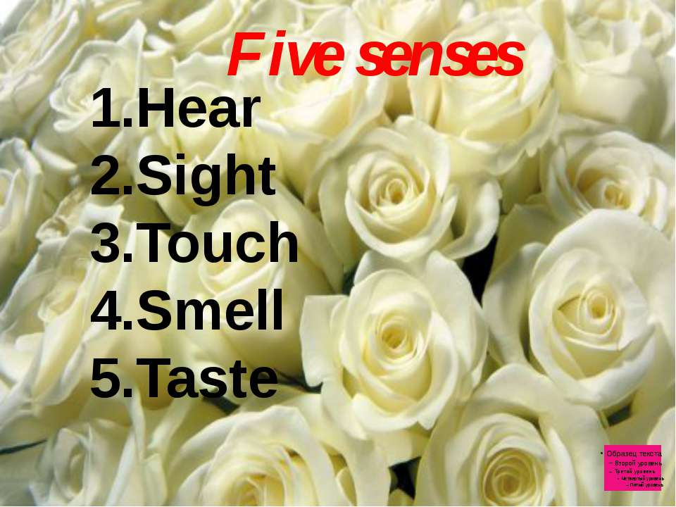 Five senses Hear Sight Touch Smell Taste