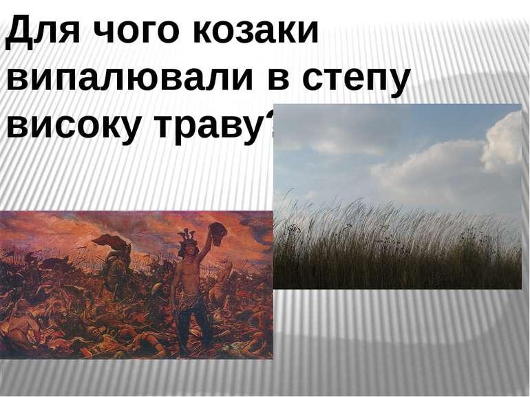 Для чого козаки випалювали в степу високу траву?