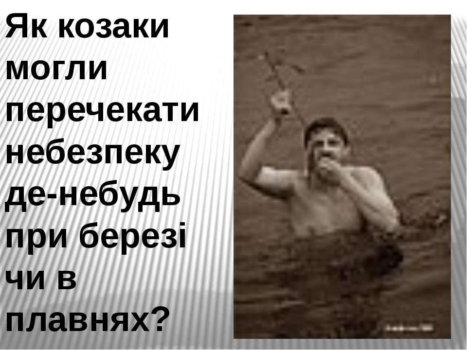Як козаки могли перечекати небезпеку де-небудь при березі чи в плавнях?