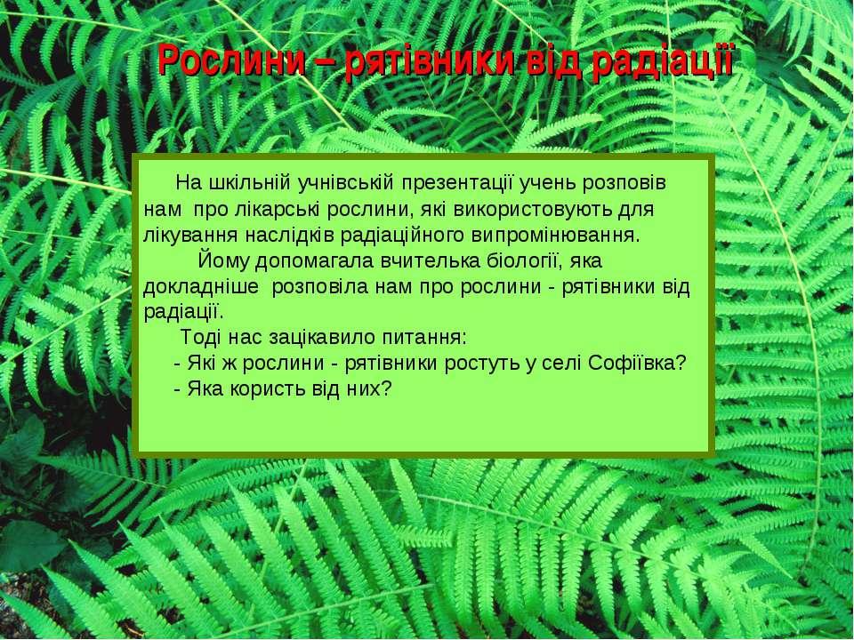 Рослини – рятівники від радіації На шкільній учнівській презентації учень роз...
