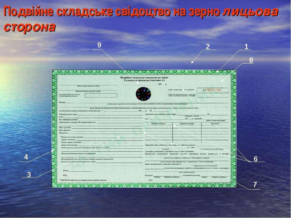 Подвійне складське свідоцтво на зерно лицьова сторона 1 2 3 4 6 7 8 9