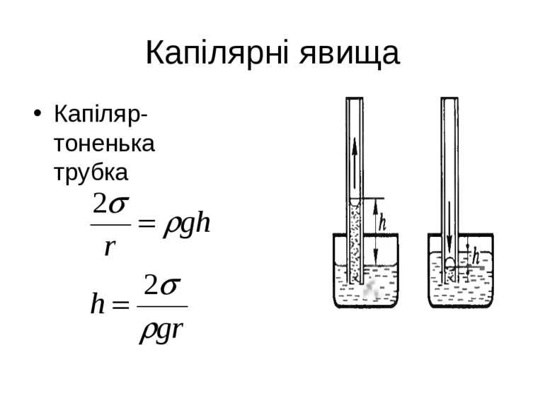 Капілярні явища Капіляр-тоненька трубка