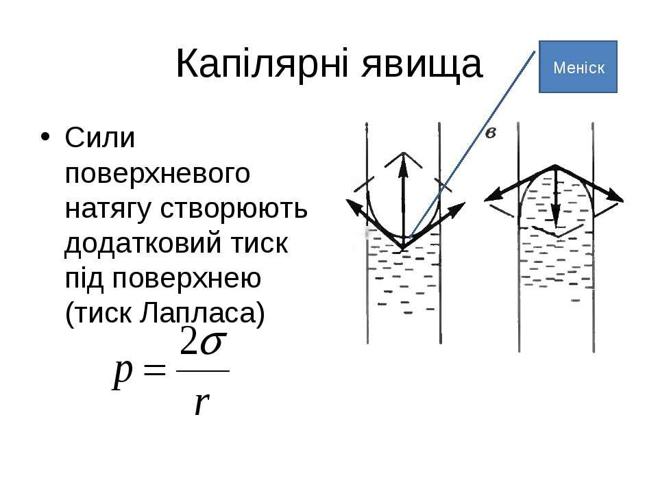 Капілярні явища Сили поверхневого натягу створюють додатковий тиск під поверх...