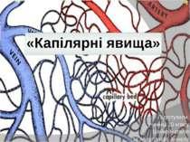 «Капілярні явища» Підготували учениці 10 класу Шейко Наталія та Абдуллаєва Ан...