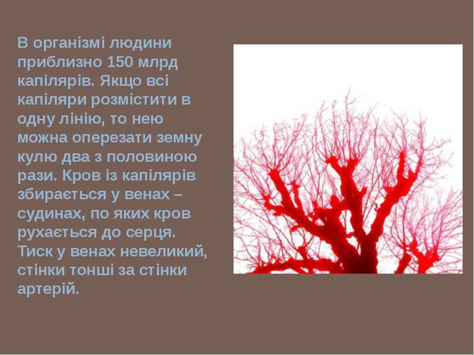В організмі людини приблизно 150 млрд капілярів. Якщо всі капіляри розмістити...