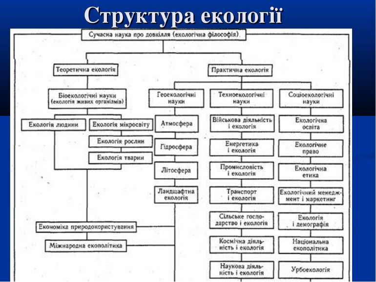 Структура екології