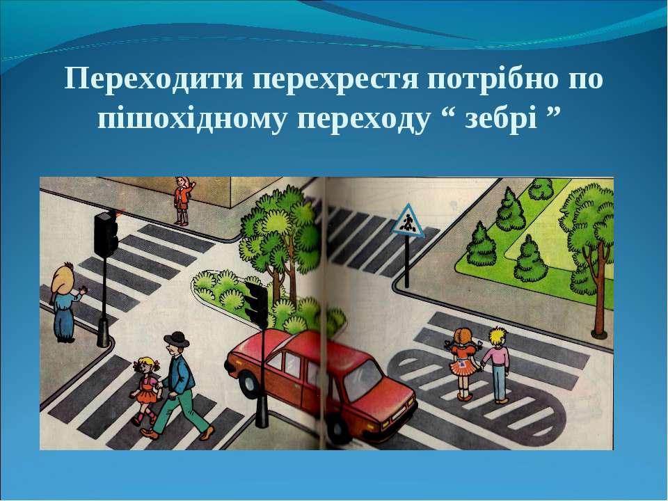 """Переходити перехрестя потрібно по пішохідному переходу """" зебрі """""""