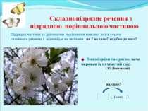 Вишні цвіли так рясно, наче вкривав їх пухнастий сніг. ( Ю.Яновський) , (наче...