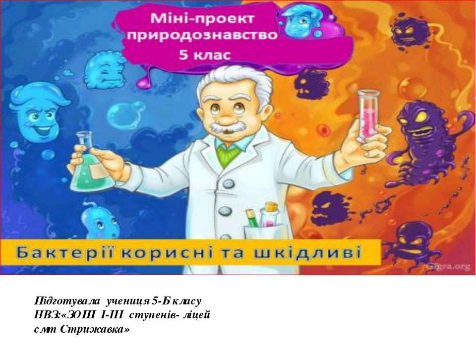 Підготувала учениця 5-Б класу НВЗ:«ЗОШ І-ІІІ ступенів- ліцей смт Стрижавка»