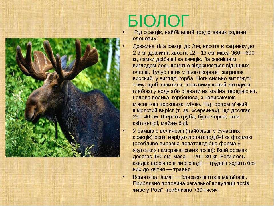 БІОЛОГ Рід ссавців, найбільший представник родини оленевих. Довжина тіла самц...