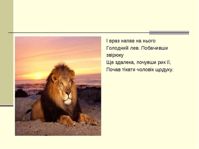 І враз напав на нього Голодний лев. Побачивши звірюку Ще здалека, почувши рик...