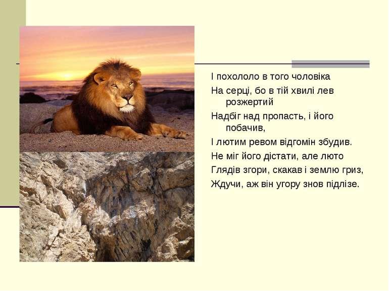І похололо в того чоловіка На серці, бо в тій хвилі лев розжертий Надбіг над ...