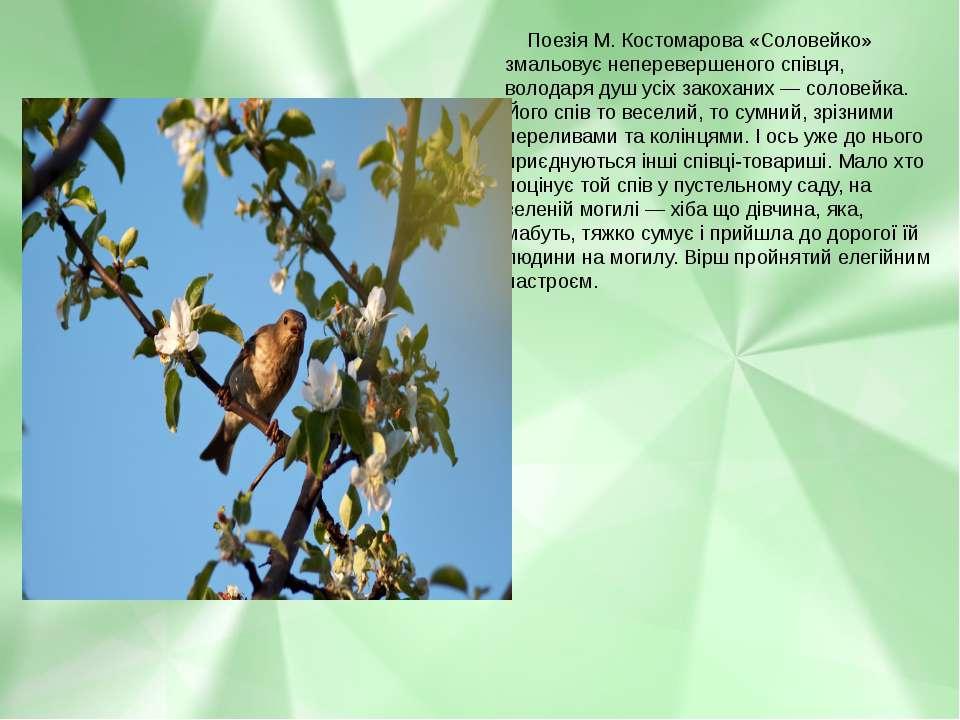 Поезія М. Костомарова «Соловейко» змальовує неперевершеного співця, володаря ...