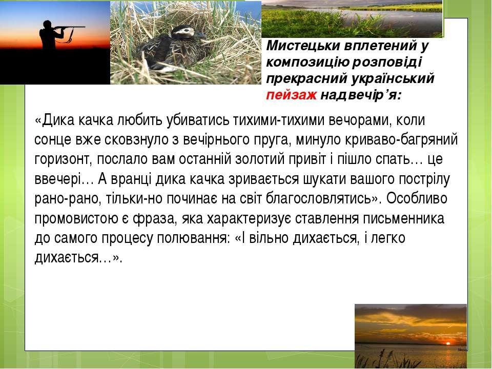 Мистецьки вплетений у композицію розповіді прекрасний український пейзаж надв...