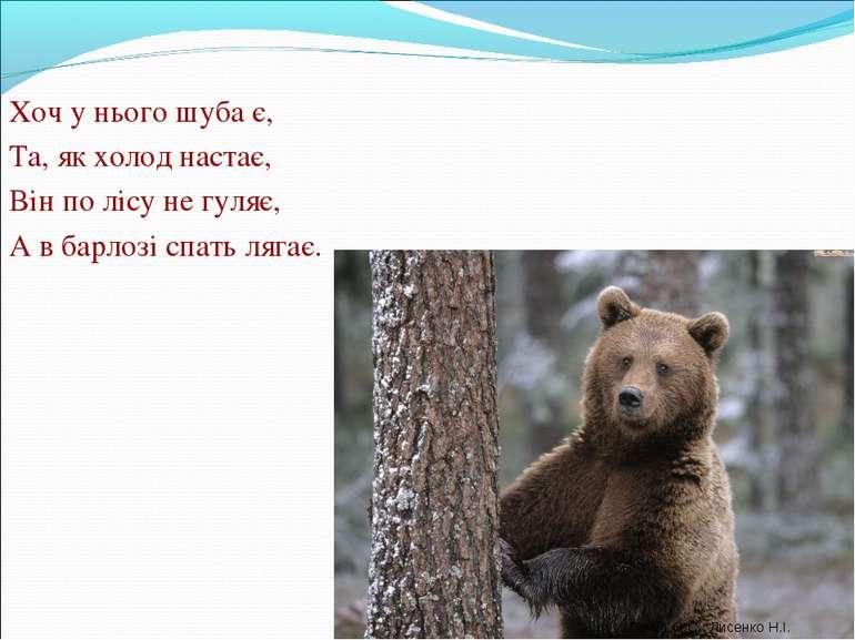 Хоч у нього шуба є, Та, як холод настає, Він по лісу не гуляє, А в барлозі сп...