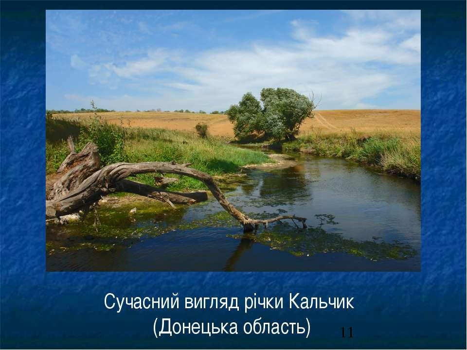 Сучасний вигляд річки Кальчик (Донецька область)