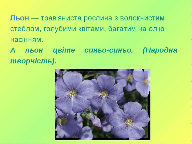 Льон — трав'яниста рослина з волокнистим стеблом, голубими квітами, багатим н...